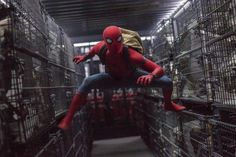 'Spider-Man: Homecoming' (Film Review)