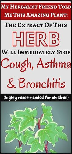 This Is Natural Remedy For Cough, Bronchitis & Asthma - Health and Fitness. Natural Cough Remedies, Cold Home Remedies, Natural Health Remedies, Natural Cures, Natural Healing, Herbal Remedies, Natural Foods, Natural Products, Natural Beauty