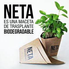 NETA es una maceta de trasplante biodegradable -¿Qué es una #neta?