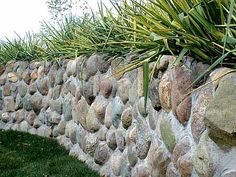 Beautiful Field Stone Wall
