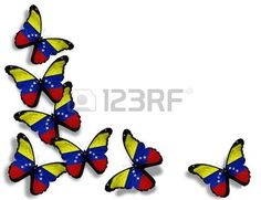 bandera de venezuela: Mariposas de bandera venezolana, aislados en fondo blanco…