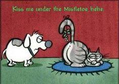 Merry Catmas....😄