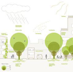 Árvores no planejamento urbano