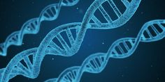 It's NATIONAL DNA DAY & the Anniversary of the Human Genome Project Completion! Take note of all the advances genetics have provided and the many more to come. Film Le Secret, Karma Yoga, E Dublin, Neurone, Coran, Dna Test, Alzheimers, Health Care, Human Body