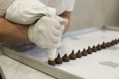 Dall'esperienza Gay Odin nasce Cioccolato Foresta | © Machi di Pace - Campania su Web