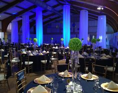 Blue and Green, Uplighting on Sheer , Beautiful Wedding