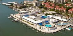 Clearwater Marine Aquarium | CMA inspires passion to respect and protect our marine life and environment for future generations.