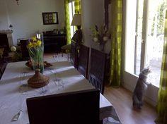 House and Cat sitter needed.  House Sitter Needed  Saint-Nom-La-Breteche, Western Suburbs, Yvelines   Ile-De-France France  Jul 8,2015 For until 1-08-2015