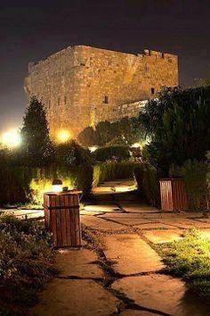 قلعة دمشق من الحديقة البيئية