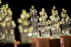 Canna Swiss Cup・Gewinner Hunderte von Jury-Mitgliedern haben gewählt und die Sieger erkoren. Wir sind auf dem 2. Platz (Glashaus) und 3. Platz (Indoor) gelandet. #cannaswisscup2017 #cannaswisscup #cannabiscup #switzerland #growing #cbd #cannabis #thebotanicals #Kiosk #purenaturalraw #Cannabisnews #MedicalCannabis #Pro7 #cbdgoldoil #Hanf #Weed #Forschung #Prävention #Medizin #THC #Marijuananews #Tabakersatz #SwissCannabis #Artur #Cannabidiol #Pot #Medizinischescannabis #ArturCBD #ArturWeed Kiosk, Cannabis, Pure Products, Fruit, Glass House, Hemp, Research, Medicine, Ganja