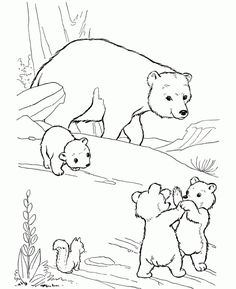 Printable Bear Coloring Pages . 24 Printable Bear Coloring Pages . Free Printable Bear Coloring Pages for Kids Polar Bear Coloring Page, Bear Coloring Pages, Coloring Pages To Print, Free Printable Coloring Pages, Adult Coloring Pages, Coloring Sheets, Coloring Pages For Kids, Coloring Books, Colouring