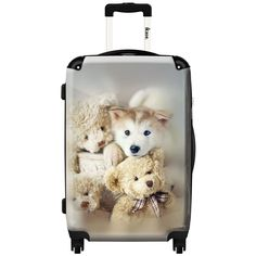 iKase 'Sweeties White Dogs' 24-inch Fashion Hardside Spinner Suitcase