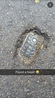 found -Fossil found! found - 30 Try Not To Laugh At These Hilarious Meme Pictures Funny Memes - Funny animals have always been an internet sensation. They've got what it takes to make us laugh, especially when . Crazy Funny Memes, Really Funny Memes, Stupid Funny Memes, Funny Relatable Memes, Haha Funny, Funny Posts, Funny Shit, Funny Quotes, Funny Stuff