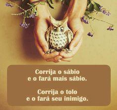 '' Corrija o #sabio e o fará mais sábio. #Corrija o #tolo e o fará #inimigo.'' #frases #sabedoria