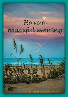 Have a peaceful evening.