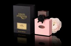When Paris meets Venice: David Jourquin launches Cuir Vénitien David, Perfume Bottles, Fragrance, Product Launch, Luxury, Venice, Women, Flasks, Leather