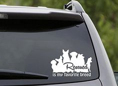 Rescued Is My Favorite Breed 6 White VINYL Car Wall Decal Rescues Adopt Paws Animals Awesome Fun Cool Love Dog Cat Pet *** Click image to review more details.