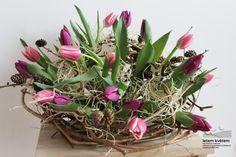 Zahradní a krajinářská architektura, zakázková floristika - Letem květem Plants, Plant, Planets