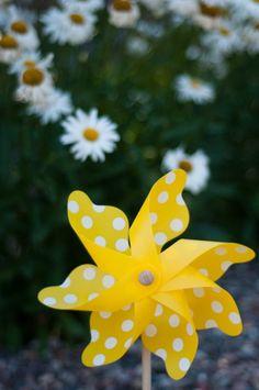 Yellow and Gray (parasols, pinwheels, flowers, card holder, bins) :  wedding bins calla lillies card box card holder flowers gray parasols pewter pinwheels DSC 4846