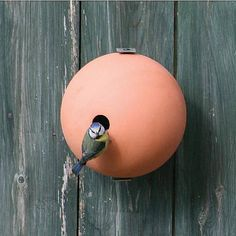 Birdball Birdhouse - Terracotta Or White