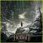 the hobbit the desolation of smaug - Google Search