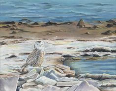 Snowy on Gull Point 14 x 11 inches acrylic on canvas Bird Paintings, Gull, Canvas, Art, Paintings Of Birds, Tela, Art Background, Kunst, Canvases