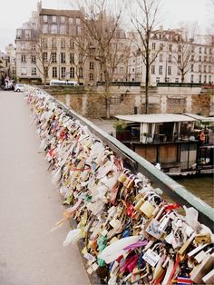 Love Locks on the Seine                          -by © Julia Caffarena