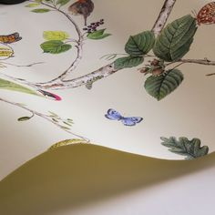 Sanderson Woodland Chorus Cream Wallpaper extra image