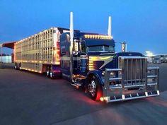Custom Semi Cattle Trucks | Peterbilt Bull Hauler | Big Trucks | Pinterest | Peterbilt, Cattle and ...
