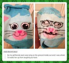 funny-sock-cat-inside-out.jpg (540×491)