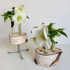 yau flori_helleborus in suporti florali YaU din mesteacan