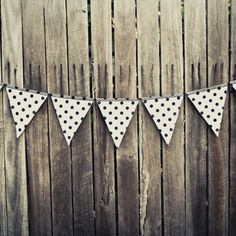 BLACK & WHITE SPOTTED bunting.