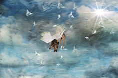 Photography by Meg Greene Malvasi. See her artist profile at www.ArtsBusinessInstitute.org