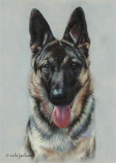Vicki Jackson - Fine Art Animal Portraits in Pastel - Artwork - Dogs Animal Paintings, Animal Drawings, German Shepherd Painting, Black Pen Sketches, Crayons Pastel, Pastel Artwork, Schaefer, Fox Art, Dog Portraits
