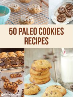 50 Paleo Cookies Recipes Galore!