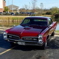 1967 GTO 1967 GTO Source by classiccarshows - My list of the best classic cars Pontiac Gto, Muscle Cars Vintage, Vintage Trucks, Us Cars, Sport Cars, Classic Chevy Trucks, Classic Cars, 1967 Gto, Gto Car