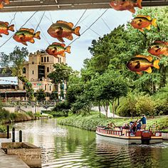 Texas | South's Best Neighborhood: River North, San Antonio | SouthernLiving.com