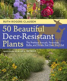 50 Beautiful Deer Resistant Plants The Prettiest Annuals Perennials Bulbs And Shrubs That Don T Eat Written By Ruth Rogers Clausen Photography