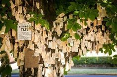 Best of Portland 2014: The Wishing Tree in Irvington, NE Portland, Oregon.
