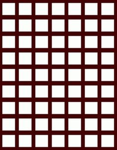 You would see grey spots where the black lines intersect. However, there are none !