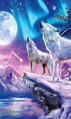 Save Gray Wolf, buy quality products and provide wolf sanctuary! Anime Wolf, Wolf Photos, Wolf Pictures, Wolf Love, Mythical Creatures Art, Fantasy Creatures, Wolf Craft, Wolf Artwork, Wolf Painting