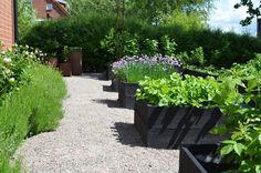 Snygga odlingslådor — Almbacken Trädgårdsdesign