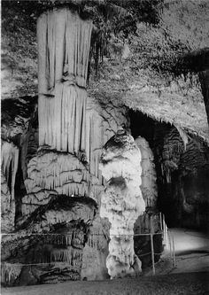 5 meter high stalactite named Brilliant #postonjskajama #postojnacaves #ljubljanacaves #postonjskacave #humanfish #placestovisit #travel #thingstodo