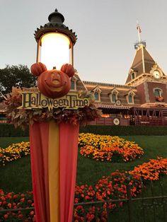 Halloween Time At Disneyland, Disney Halloween, Fall Halloween, Disney Parks, Walt Disney, Halloween Poems, Holiday Costumes, Disneyland California, Disney Aesthetic