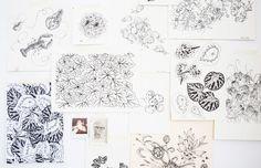 Illustrative works in the studio of Adriana Picker