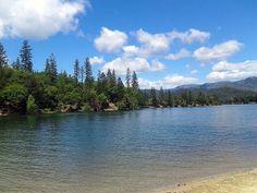 Whiskeytown Lake from Brandy Creek area by Melanie R.