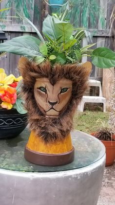 My first clay pot lion with fur. My first clay pot lion with fur. Lion Flower, Flower Pot Art, Clay Flower Pots, Flower Pot Crafts, Clay Pots, Flower Pot People, Clay Pot People, Painted Plant Pots, Painted Flower Pots