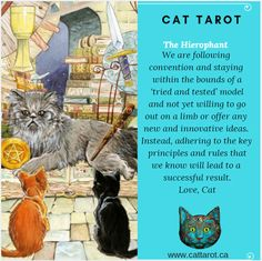 Monthly readings on my YouTube channel: www.youtube.com/c/cattarot Book your reading: www.cattarot.ca Love, Cat #tarot #tarotcards The Hierophant, Tarot Cards, Channel, Reading, Cats, Youtube, Books, Movie Posters, Tarot Card Decks