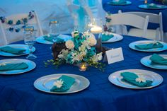 Cobalt & Turquoise reception driftwood & orchid centerpieces  www.CoastalSoirees.com