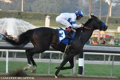 Twirling Candy(2007)Candy Ride- House Of Danzing By Chester House. 3x5 To Mr Prospector, 4x5 To Northern Dancer. 11 Starts 7 Wins 1 Second 1 Third. $944,900. Won Malibu S(G1), Del Mar Derby(G2T), Strub S(G1), Californian S(G2), Oceanside S(T), 2nd Pacific Classic(G1), 3rd Hollywood Gold Cup(G1). Entered Stud In 2012 In Ky.